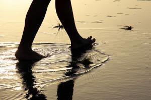 walking meditation planning